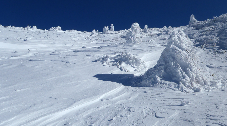初級山スキー 草津白根山
