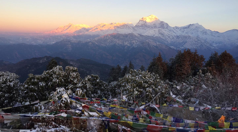 ネパール ゴレパニ・プーンヒル  トレッキング
