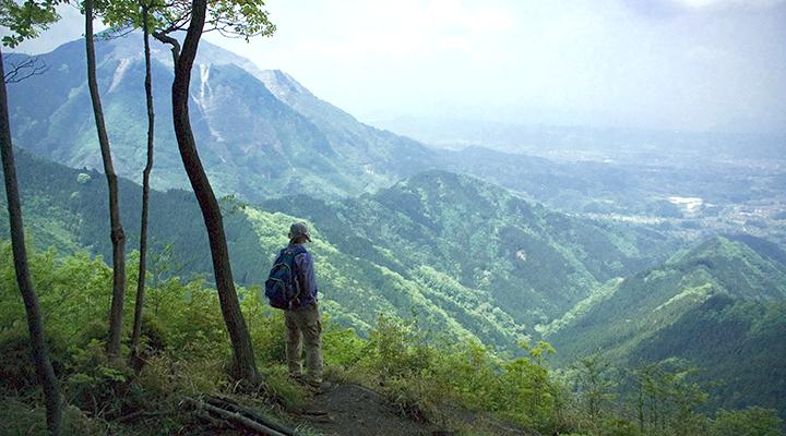 奥武蔵 武川岳 登山
