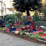 ネパール カトマンズ レストラン