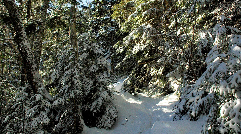 八ヶ岳 硫黄岳 雪山登山