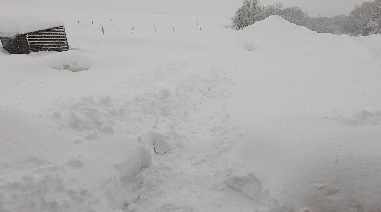 美瑛 真冬 雪かき